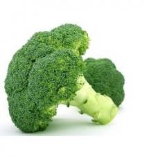 Brokolis ES vnt