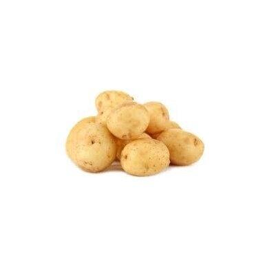 Bulvės šviežios 35+ Spunta IT