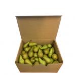 Kriaušių 55-65 dėžė