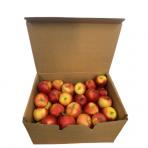Obuolių 55-65mm dėžė PL