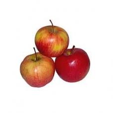 Obuoliai nuo 65mm PL kg